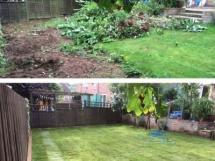 Nottinghamshire gardening